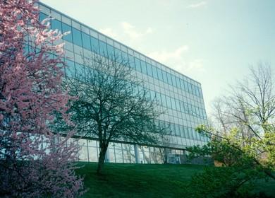 Pharmaceutical Laboratory Renovation