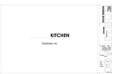 Sample Construction Documents - High-End Kitchen