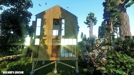 wood house project
