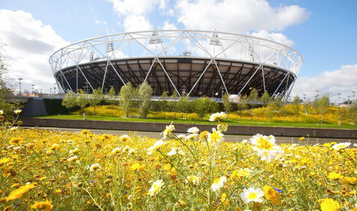 London's Olympic venues challenge architects