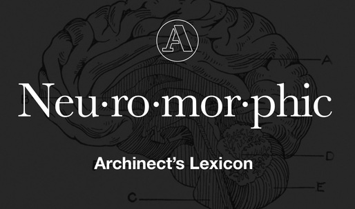 """Archinect's Lexicon: """"Neuromorphic Architecture"""""""