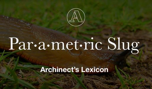 "Archinect's Lexicon: ""Parametric Slug"""