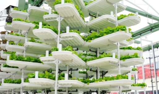 High-tech greenhouse planned for downtown Vancouver parkade rooftop