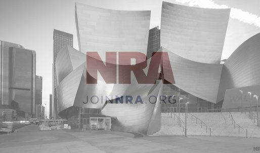 "Fast Co Design wonders, ""Why Is There So Much Modern Architecture In The NRA's New Ad?"""