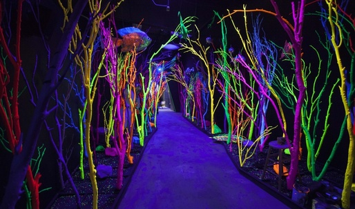 Art collective Meow Wolf's cool new model for artists to make an excellent living