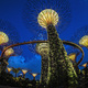 Shortlisted: Gardens by the Bay, Singapore; Photo: Darren Chin, Courtesy of Grant Associates